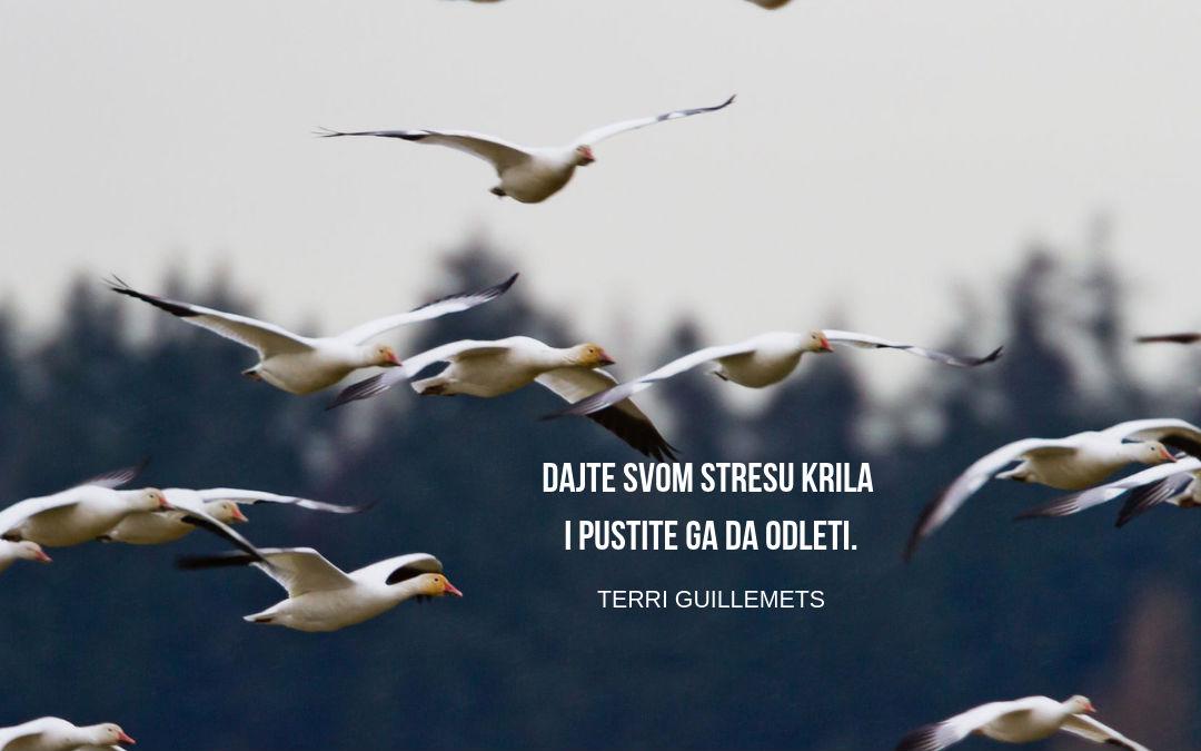 Kako stres (pozitivno) utiče na naše srce